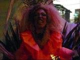 Bodas de Extanho Buffet Metropole com Drag Queen Anny B. (011) 2269-1177 e (011) 9268-3560