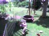 Promenade et detente dans le jardin