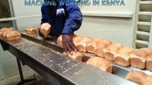 Bakery Products Packing Machine, Flow Pack Machine, Horizontal Packaging Machine, Machine working in KENYA (AFRICA)