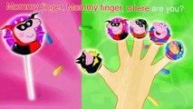 Peppa Pig Batman   Superman Lollipop Finger Family Nursery Rhymes \  Mickey Mouse TV Lyrics