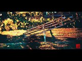 Holga Half-frame Slideshow