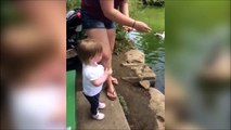Cet enfant a une drole de façon de nourrir les canards... Ahahah