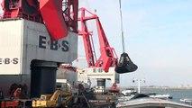 Ms Beaufort laad in Rotterdam (Maasvlakte) voor Amer Shipping