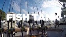 Fish Tank Sport Fishing Prepares for Triple Crown Tournament
