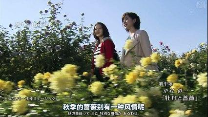 新牡丹與薔薇 第21集 Shin Botan to Bara Ep21