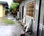 Tita Eppie's House 2