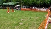 hardene agility jumping 1/06/14 ile napoleon