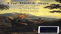 Download The Black Sun  The Alchemy and Art of Darkness  Carolyn and Ernest Fay Series in