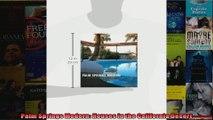 Read  Palm Springs Modern Houses in the California Desert  Full EBook