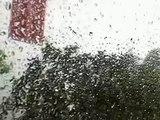 Cyclone VANIA vendredi 14 janvier 2011 Nouméa 10h15 005.mov