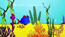 Les petits poissons dans leau