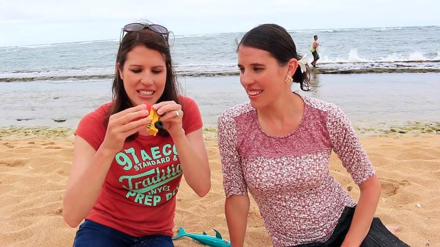 SURPRISE TOYS Challenge on Hawaii Beach With Barbie, Minnie Mouse, Shopkins Toys by DisneyCarToys
