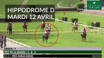 Un cheval percute des spectateurs lors dune course à Nantes