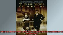 Free PDF Downlaod  When the Astors Owned New York Blue Bloods and Grand Hotels in a Gilded Age  BOOK ONLINE