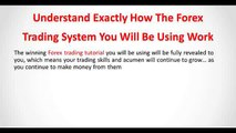 Forex Trading System - Your Forex Trading Tutorial