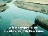 Limpieza de Playas y Parques de COSTASALVAjE