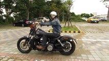 2013 Harley-Davidson FXDB Dyna Street Bob Motorcycle Speaker (2)