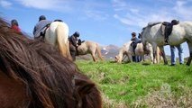 Iceland – Viking Horse-Riding and Blue Lagoon Tour