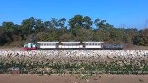 Cap Sud Ouest: Ile d'Oléron -  Train Saint Trojan/ Maumusson