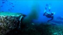 Rejets en mer près de Cassis : la vidéo polémique