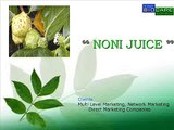 Noni Juice Suppliers in India, Noni Juice for MLM by Your Brand