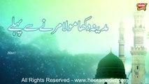 Bilal Qadri - Madina Dikha Maula