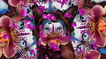 Galantis - No Money (Official Audio)