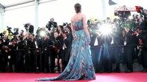 La sélection officielle du 69e festival de Cannes