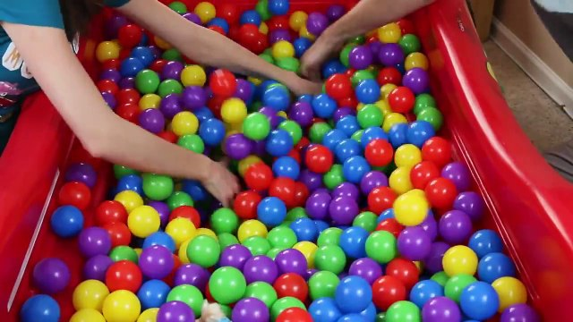 Surprise Toys BALL PIT CHALLENGE with Barbie and Disney Frozen Elsa Dolls with DisneyCarToys