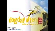 Dog Day Afternoon - Dog Boarding - Orlando FL 32806