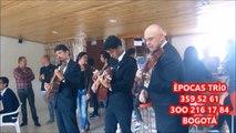TRIOS EN BOGOTA 429 48 O1 SERENATAS EN BOGOTA MUSICA DE CUERDA,VIOLINISTA EN BOGOTA