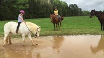 Un poney troll une petite fille sur son dos en la faisant tomber dans une flaque d'eau