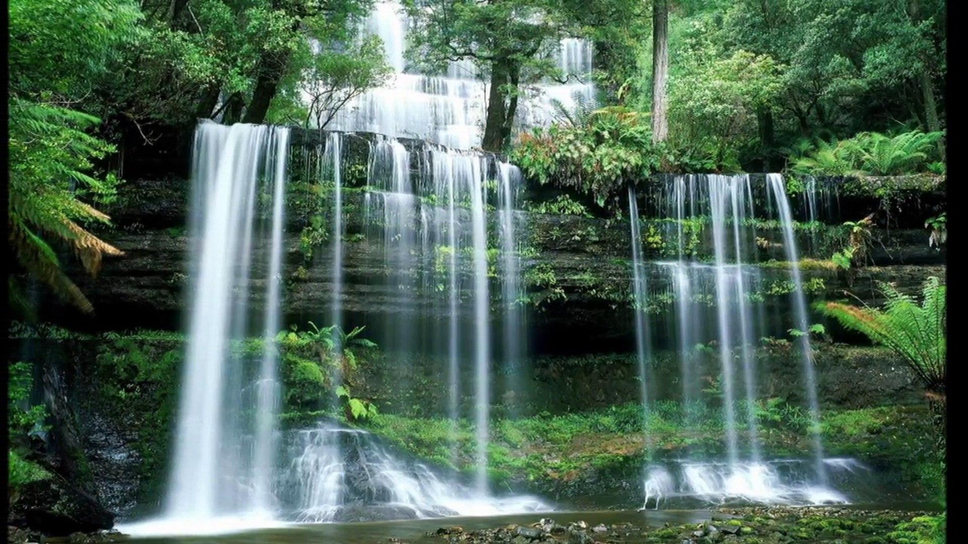Paisaje Sonoro: Cascada de Agua (SP)