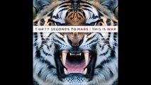 Thirty Seconds to Mars - Night of the Hunter #2