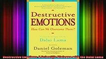 Read  Destructive Emotions A Scientific Dialogue with the Dalai Lama  Full EBook