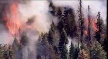 California wildfire burns deeper into Yosemite National Park