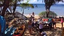Surf N Sea SUP and Kayak Rental + Surf N Sea HALEIWA SUP RACE Presented by O'Neill Promo