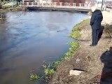 REDA  - wylewa rzeka Reda 6.02.2011 r