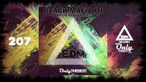 BLACK MAFIA DJ - ZERO LOOPHOLE #207 EDM electronic dance music records 2015