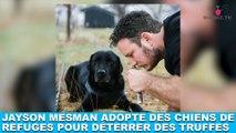 Jayson Mesman adopte des chiens de refuges pour déterrer des truffes ! L'histoire dans la minute chien #191