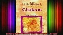 Read  Little Big Book of Chakras Little Big Book of    Series  Full EBook