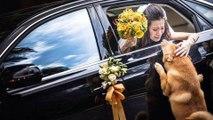 Les 26 plus belles photos de mariage primées en 2014