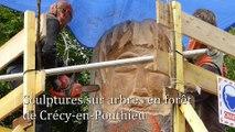 Sculptures sur arbres en forêt de Crécy-en-Ponthieu