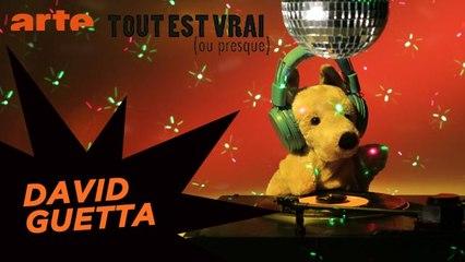 David Guetta - Tout est vrai (ou presque)