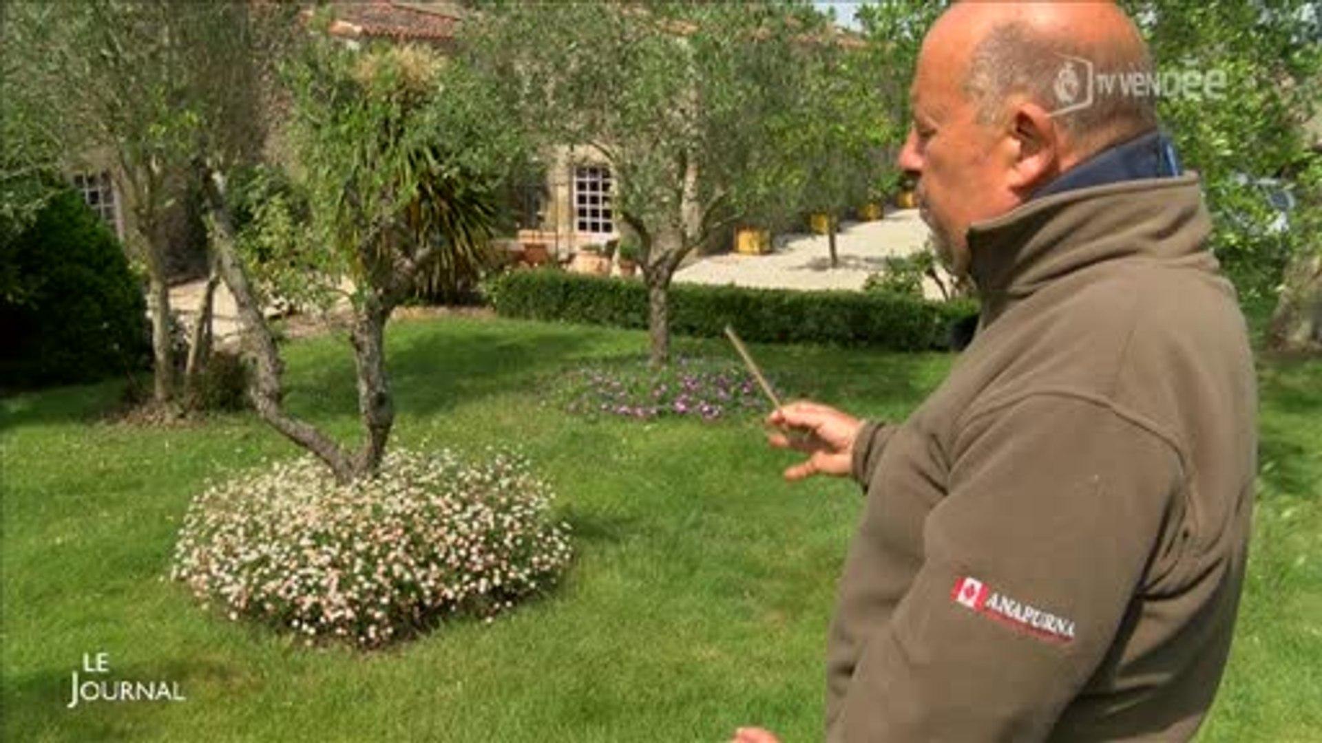 Les Jardins De La Robinière jardin : visite du logis de la robinière (vendée)