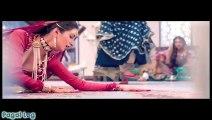 پاکستانی فلم ماہ میر کا نیا گانا ریلیز کردیا