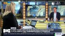 Pascal Canfin commente la liste de la WWF sur les 25 entreprises françaises qui ont le plus d'impact sur la déforestation et la surpêche - 20/04