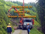 Seilkran Tower Yarder Syncrofalke 3t mit Sherpa U 3t und Woody 60 (1)