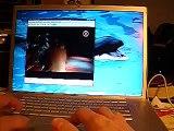 Ubuntu + Compiz Fusion@Macbook Pro