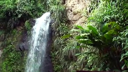 Tour in St Lucia from Sandals